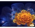 фото: картина для вышивки бисером, графический оранжевый цветок на тёмном фоне