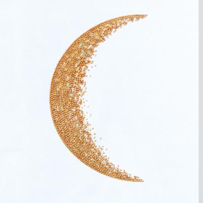 фото: картина, вышитая бисером, Месяц