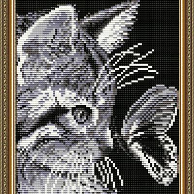 Набор в технике алмазная вышивка Кот с бабочкой