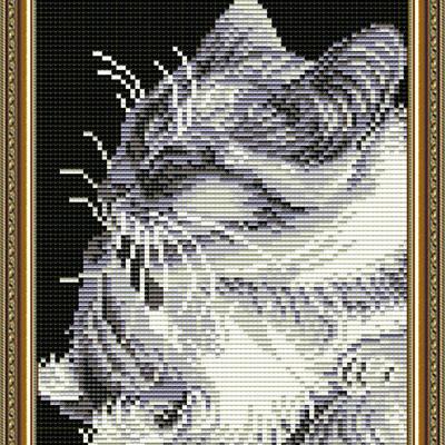 фото: картина в алмазной технике Кошка