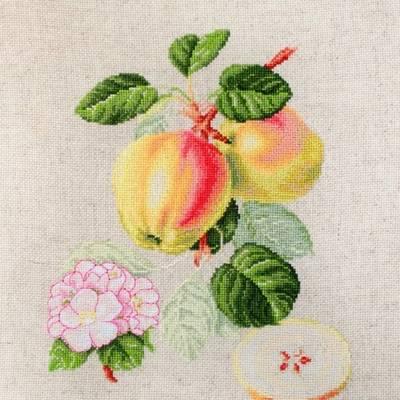 фото: картина для вышивки крестом Яблоки