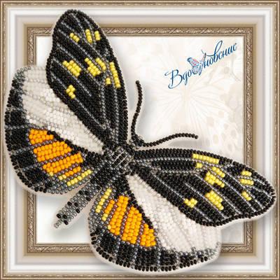 Набор для вышивания бисером на пластиковой канве Бабочка DISMORPHIA EUNOE DESINE