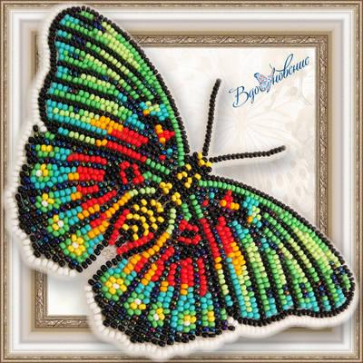 Набор для вышивания бисером на пластиковой канве Бабочка EUPHAEDRA EDWARDSI