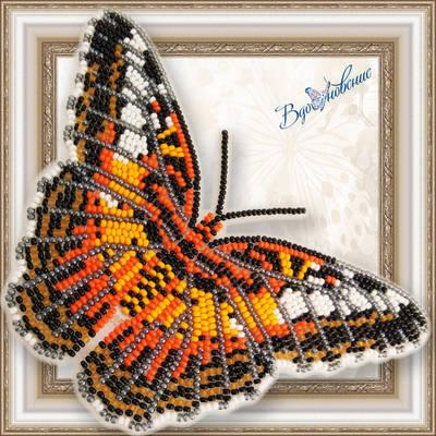 Набор для вышивания бисером на пластиковой канве Бабочка Партенос Сильвия