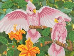 фото: картина для вышивки бисером Какаду