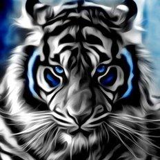 фото: картина в алмазной технике Бенгальский тигр