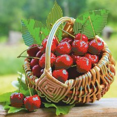 фото: картина для вышивки бисером Корзинка с вишнями