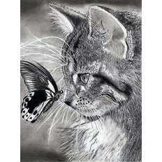 фото: картина для раскрашивания по номерам, Знакомство с бабочкой