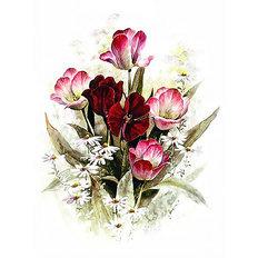 фото: картина для раскрашивания по номерам, Аромат весны