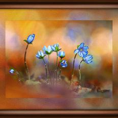 фото: картина со стразами, Лесные цветы