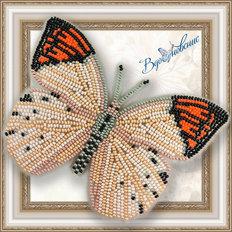 Набор для вышивания бисером на пластиковой канве Бабочка Гебомоя Главк