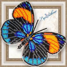 Набор для вышивания бисером на пластиковой канве Бабочка Калликора Сапфирная