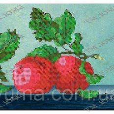 фото: картина для вышивки бисером Яблочки